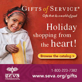 Seva Foundation banner